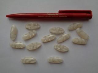 Alulvarrós műanyag gomb, fehér, hosszúkás (2744)