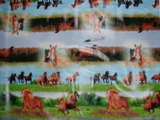 Viaszos vászon, lovas (11250)